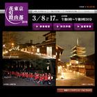 清水寺や八坂の塔などが幻想的にライトアップされる京都・東山花灯路2019開催!